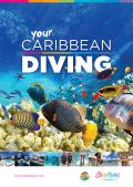 Caribbean Diving Guide