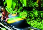 5. Zoom down the mountain on a bob sled Cool Runnings Style at Mystic Mountain Ocho Rios Jamaica copy