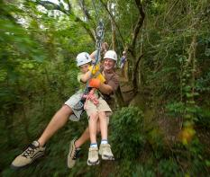 Antigua and Barbuda Rain Forest Canopy Tour